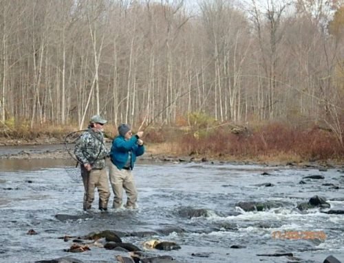 VT Digger: Gone fishing: An epic legal battle epitomizes a 'reflexive instinct' to block records