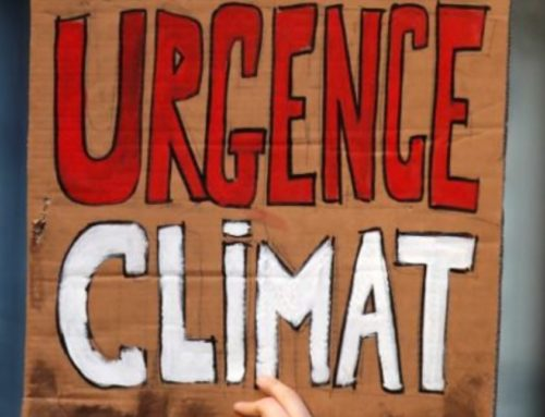 Dailer Caller: Eco-Activist's Sordid Criminal History Sheds Light On Parents' Role In Children's Climate Crusade