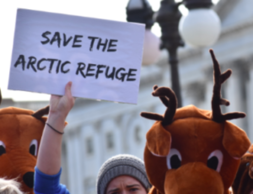 InsideSources: Taking the Fight Over ANWR to Twitter