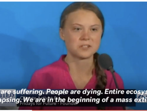 Newsweek: What Message Would the Nobel Committee Send by Choosing Greta Thunberg?