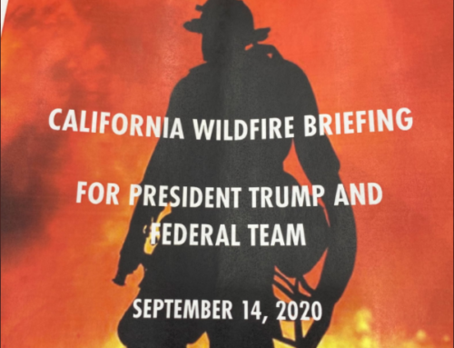 Grimes: Scientific Evidence Reveals 'No Climate Effect' on California's Wildfires