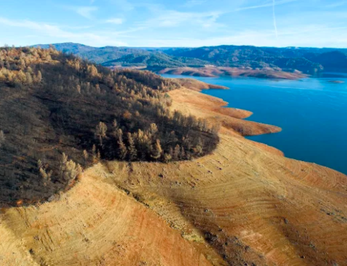 Grimes: If California is Facing a Rare Mega-Drought, Why is the State Releasing Water from Reservoirs