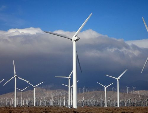 Grimes: Enviro Expert: California's 'Clean Energy' Policies Should Not Be Adopted by Federal Govt.
