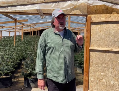 Grimes: Rep. Doug LaMalfa Highlights Need for Active Forest Management and Crackdown on Illegal Marijuana Grows