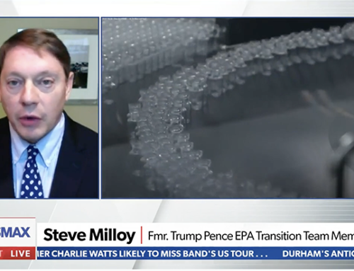 """Milloy talks vaccines on Newsmax's """"National Report."""""""