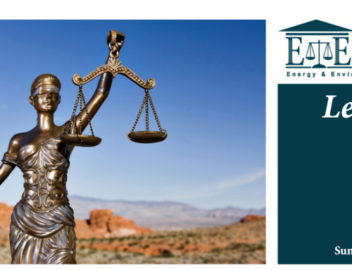 E&E Legal Letters Issue XXXII: Summer 2021